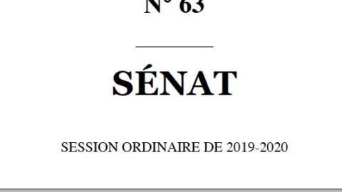 PROJET DE LOI ADOPTÉ PAR L'ASSEMBLÉE NATIONALE relatif à la bioéthique -Enregistré à la Présidence du Sénat le 16 octobre 2019