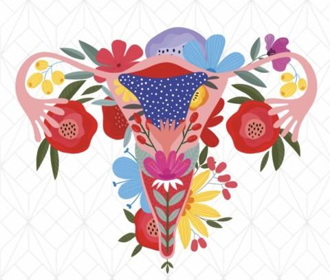 Utérus Day du 12 mars 2020, retrouvez les topos !